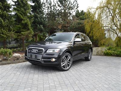 2014 Audi SQ5 Technik