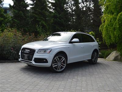 2016 Audi SQ5 Technik